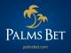 5-те най-популярни слот игри в PalmsBet